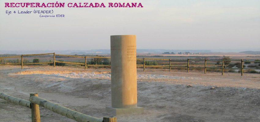 La Calzada Romana en la Ribera de Navarra