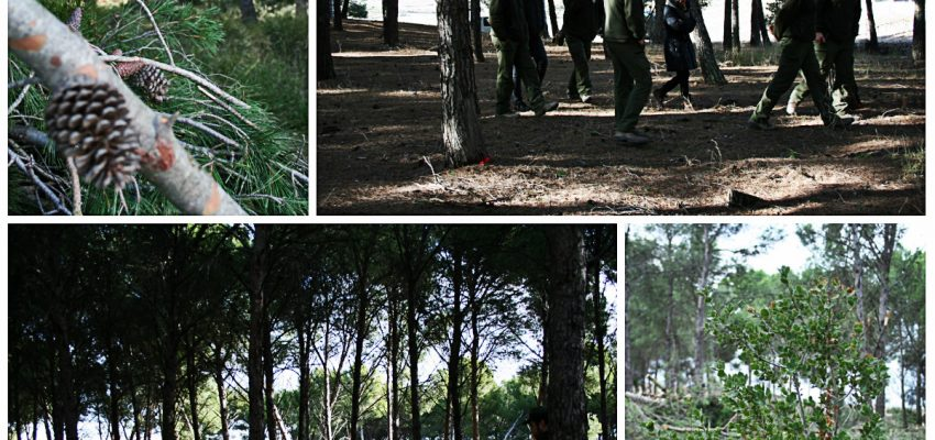Un día con el Guarderío Forestal en la Ribera de Navarra.