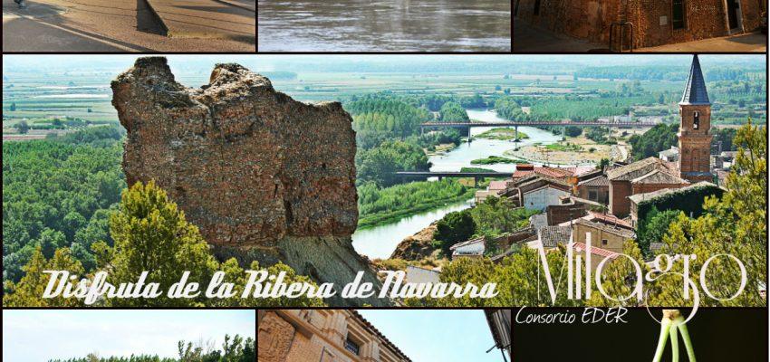 Disfruta de la Ribera de Navarra; Milagro