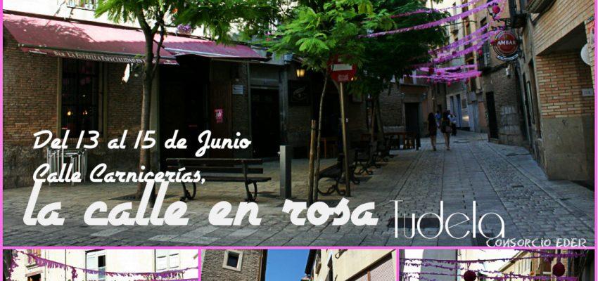 Tudela en «ROSA». Fiesta del vino rosado de D.O Navarra