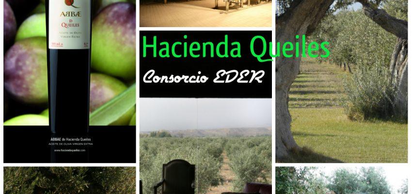El Trujal Hacienda Queiles participa en el Calculo de la Huella de Carbono dentro del proyecto EURENERS