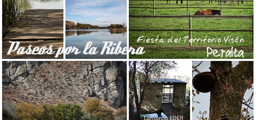 Peralta, paseos por la Ribera. Jornada Territorio Visón 7 de Junio