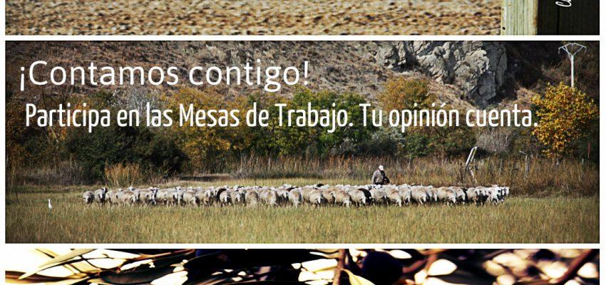 Programa de Desarrollo de la Ribera de Navarra 2014 – 2020. ¡Contamos contigo!