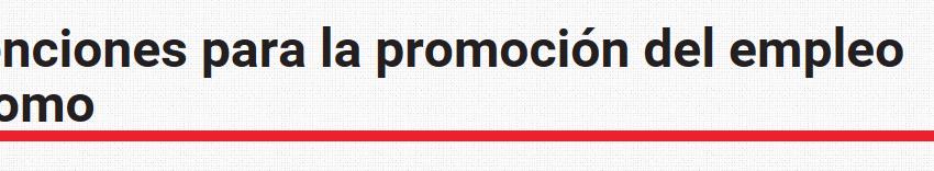 Ayudas para la Promoción del Empleo Autónomo. Gobierno de Navarra. Convocatoria 2016.