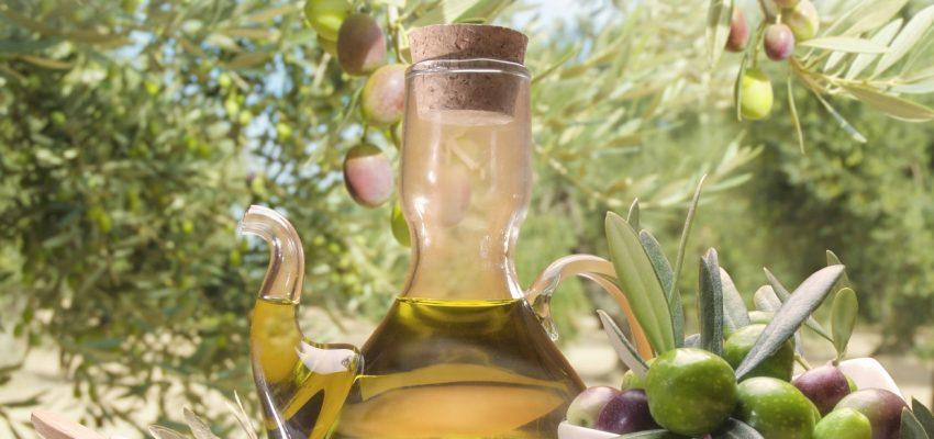 IV Fiesta del Olivo y del Aceite AOVE de Cascante. 10 y 11 de Mayo