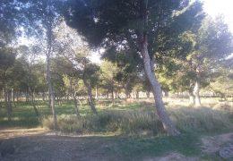 Parque Mirador de las Bardenas