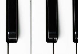Taller de organería e instrumentos de teclado