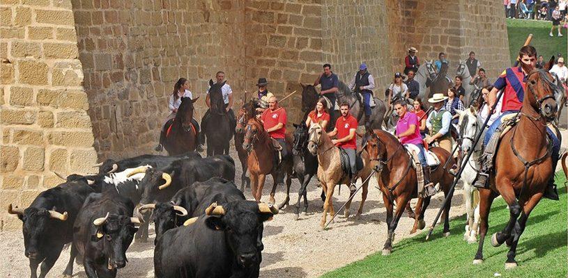 En octubre… Ferias en Marcilla