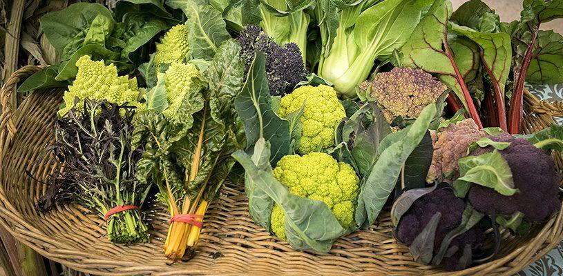 Mercado de las Verduras de Invierno de Azagra