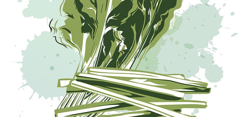 Día de la Acelga y la Borraja en Cabanillas